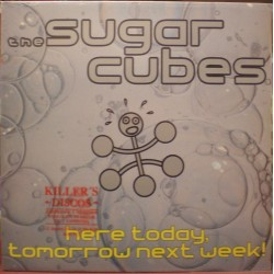 Sugar Cubes - Here today, tomorrow next week!