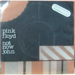 Pink Floyd - Not Now John.