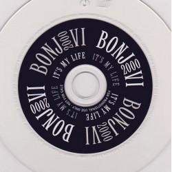 Bon Jovi - Its My Life.