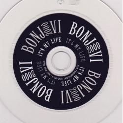 Bon Jovi - Its My Life.