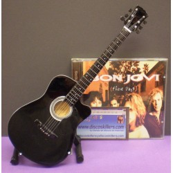 Guitarra de Doble Mástil Richie Sambora (Bon Jovi)