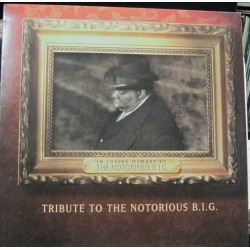 Tribute To Notorious B.I.G. - Puff Daddy, The Lox...