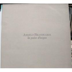 Angelo Branduardi - La Pulce D´acqua.