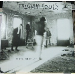 Pilgrim Souls - Is This All Of Us?