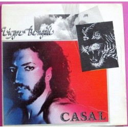 Casal - Tigre Bengali