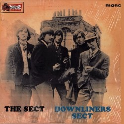Downliners Sect ‎– The Sect.